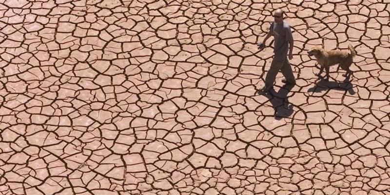 """Terra Corre O Risco De Virar """"estufa"""" Mesmo Com Redução De Emissões"""