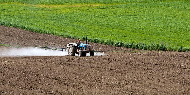 Agrotóxicos E Outras Substâncias Químicas Matam 193 Mil Pessoas No Mundo Por Ano