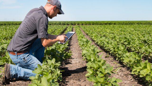Agricultura Digital é Caminho Sem Volta, Afirmam Especialistas