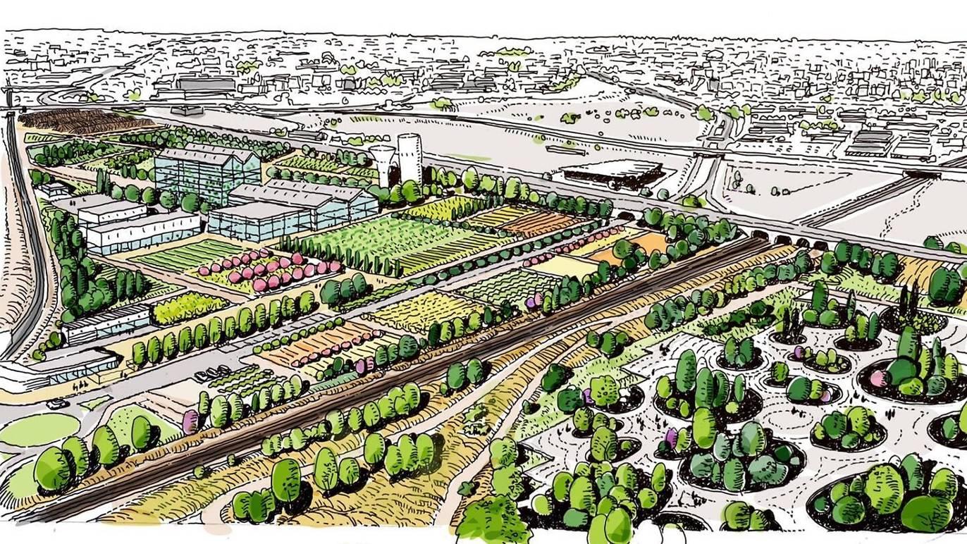 Madrid Vai Plantar Bosque Metropolitano Com 75 Km De Extensão
